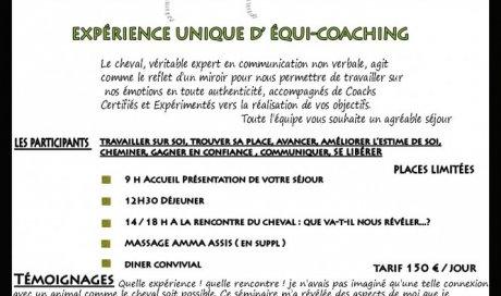 Expérience unique d'équi-coaching Clermont-Ferrand