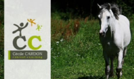 Développement personnel par le cheval aux Écuries du Vieux Moulin à La Balme-de-Thuy
