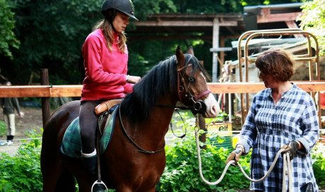 Coaching facilité par le cheval ou equi coaching Montbrison